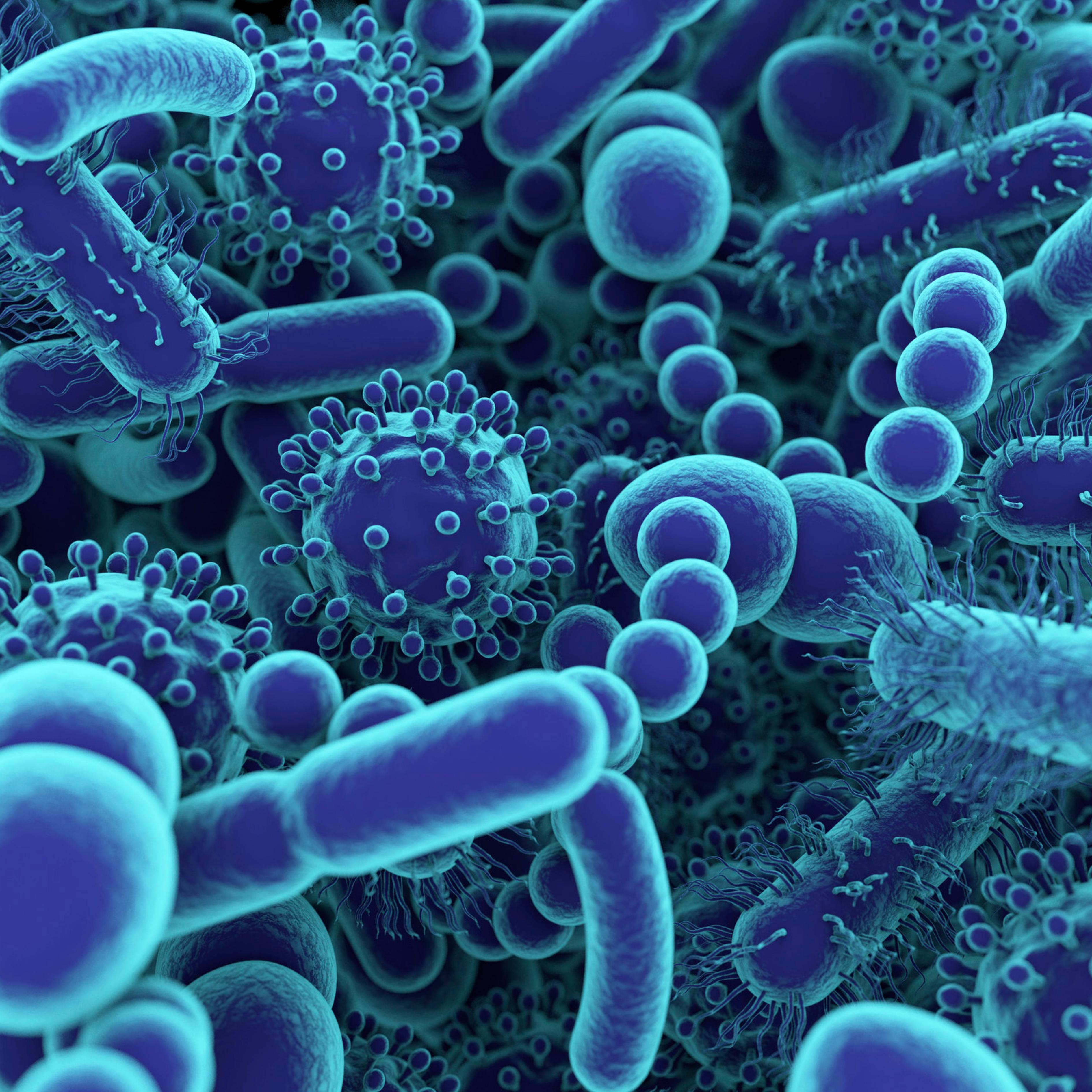 Il ruolo del microbiota intestinale nella dietetica clinica del cane e del gatto