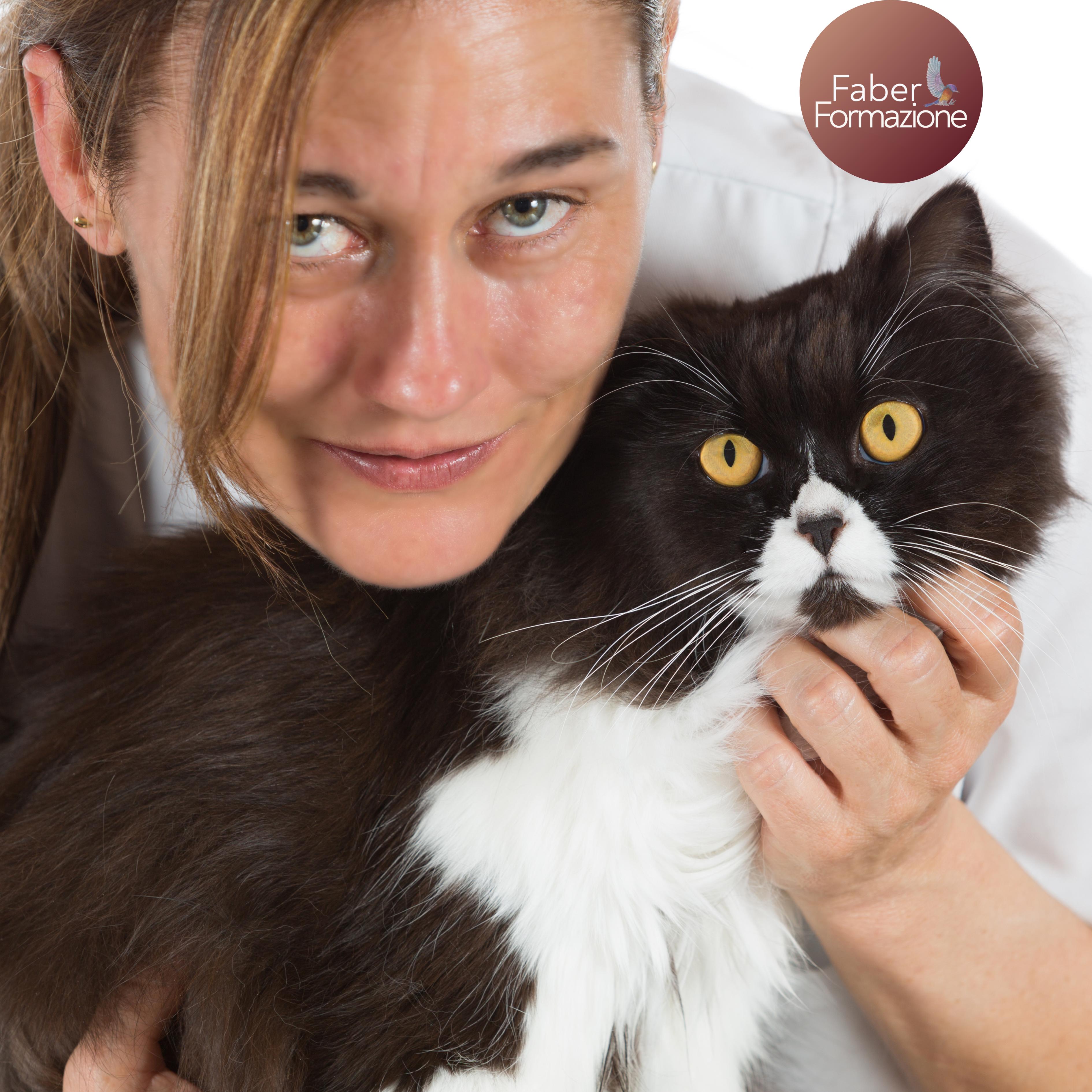 Caso Clinico di Nutrizione e Dietetica del Cane e del Gatto  - 17 12 2020