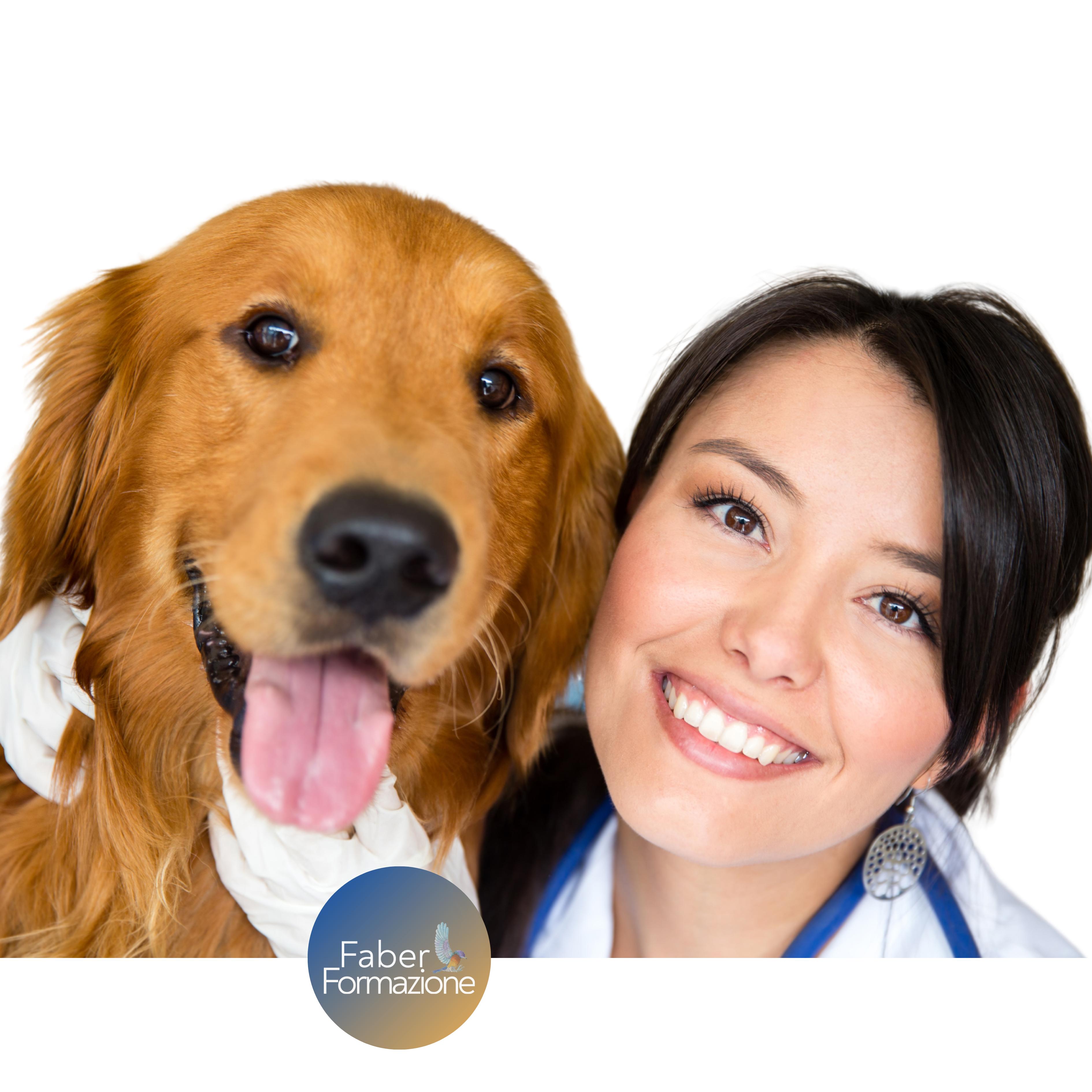 Capsula di Oncologia Medica Veterinaria - 2