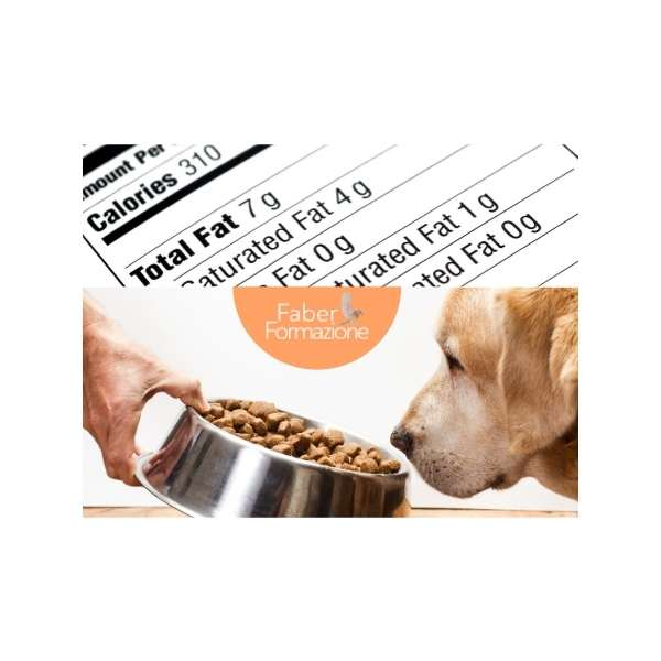 Le Etichette del Pet Food come leggerle e come interpretarle
